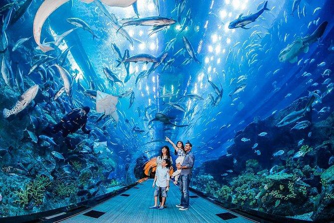 Hoppa över linjen: VIP Dubai Aquarium Ticket