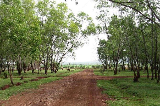 Bangalore Countryside and Vineyard Tour