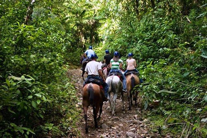 Horseback Riding in Tamarindo