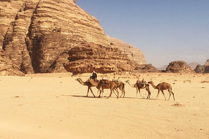 SOUTH JORDAN HIGHLIGHTS- Private Tour From Aqaba to Wadi Rum and Petra in 3 Days
