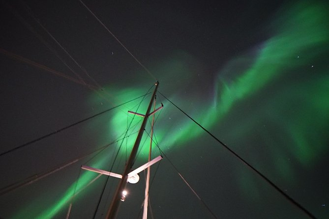 Northern Lights Hunting - Catamarano di lusso Arctic Princess