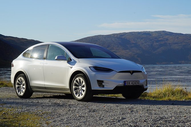 Fjord Sightseeing - Eco friendly Tesla Model X