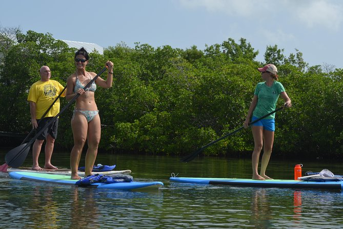 Key West Stand Up Paddleboard Rental with Included Lesson