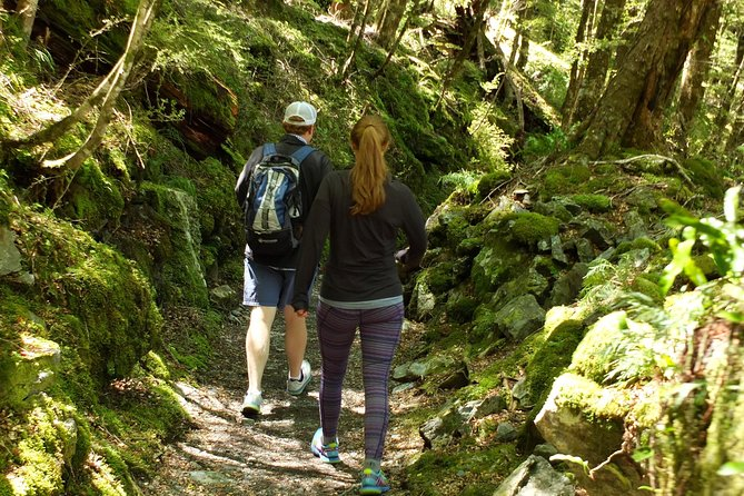 Full-Day Small-Group Routeburn Valley Walk photo 2