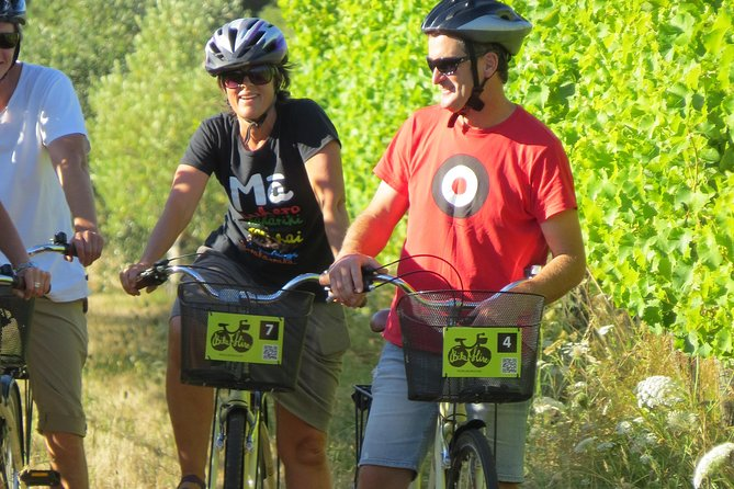 Half-Day Marlborough Wine Region Bike Hire
