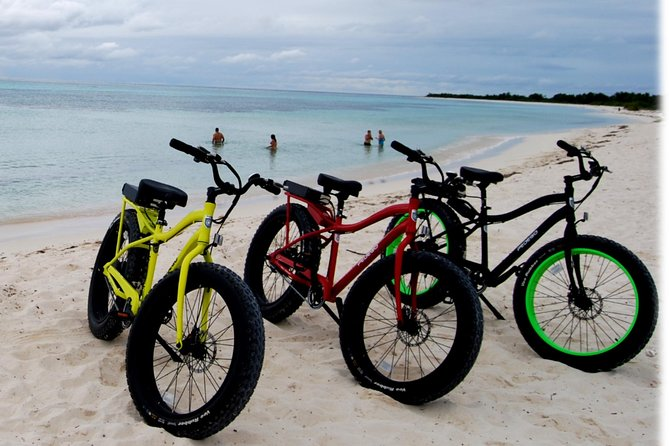 Punta Sur Eco Beach Park Electric Bike Tour in Cozumel