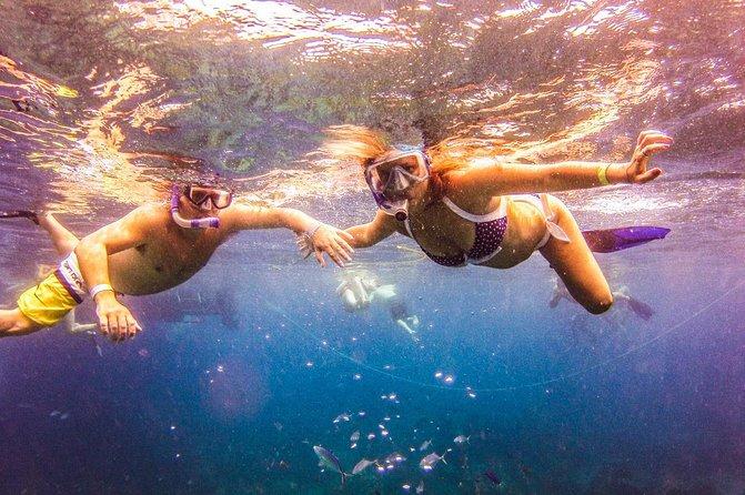 Excursão de dia inteiro com mergulho com snorkel na Ilha Catalina saindo de Punta Cana