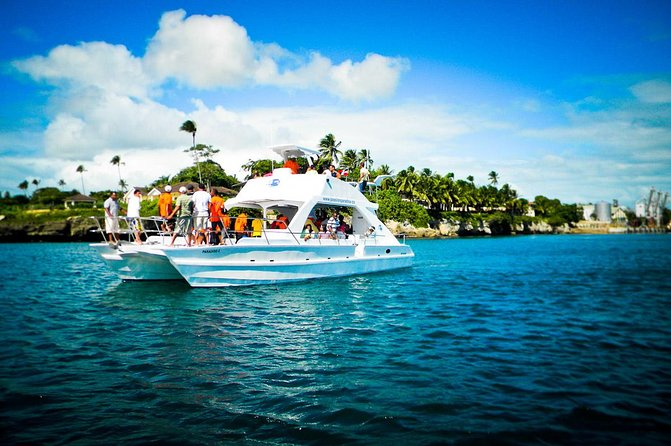 Full-Day Catalina Island Snorkeling Tour from La Romana