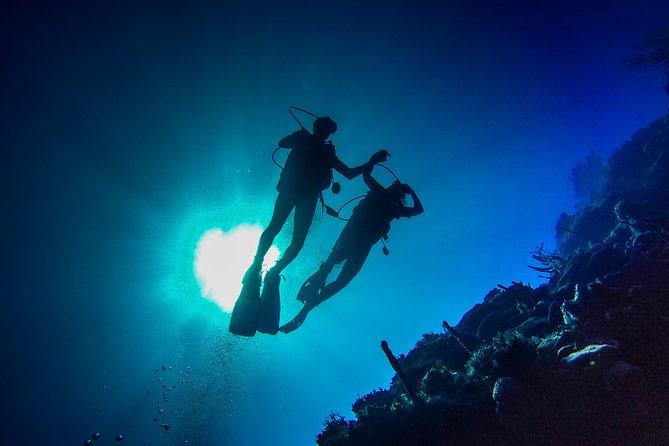 Mergulho de dia inteiro na Ilha Catalina saindo de Bavaro