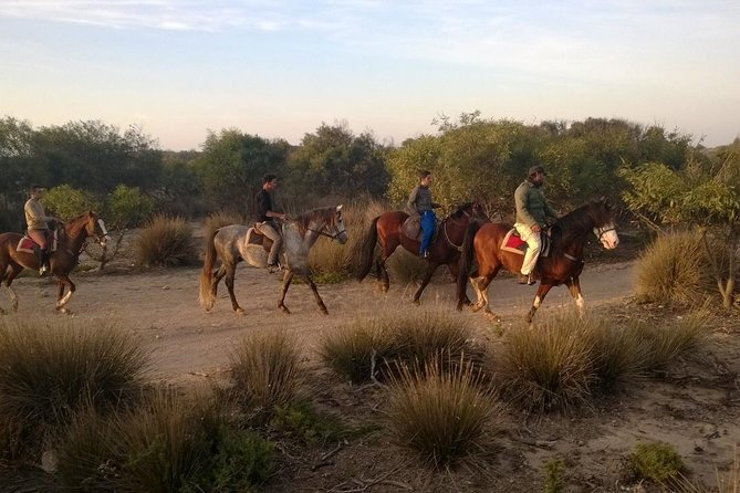 3 Hours Horse Riding with Diner and Overnight From Essaouira