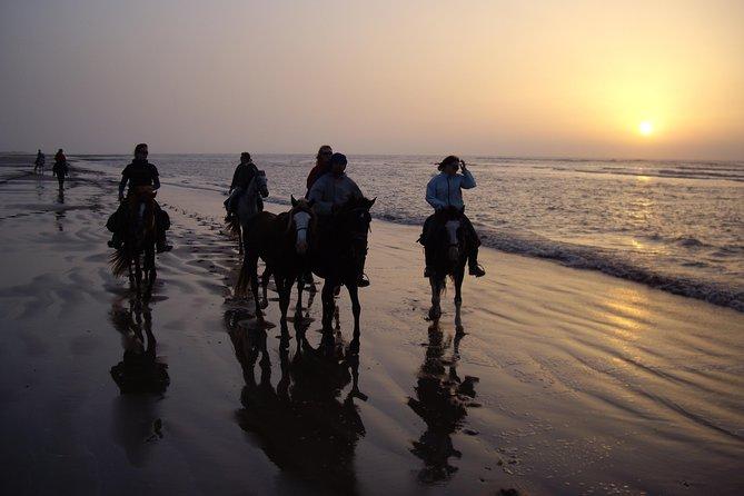 Atlantic Coast Trail Ride 16 - 23 November 2019 Morocco