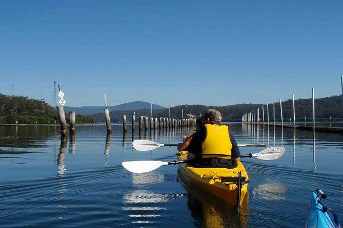 Oyster Kayak Tour from Batemans Bay