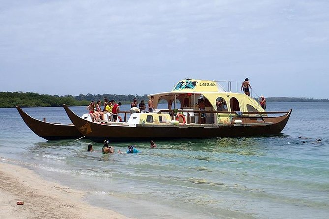 Full-Day Bocas del Toro Catamaran Dolphin and Snorkeling Tour in Panama