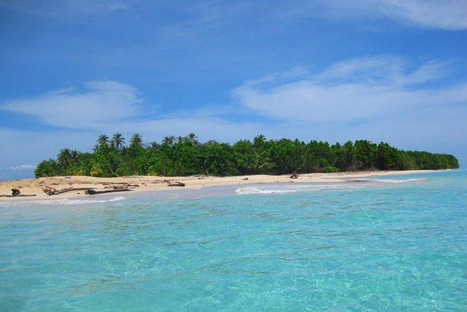 Full-Day Speedboat Tour, Wildlife, and Snorkeling in Bocas del Toro in Panama