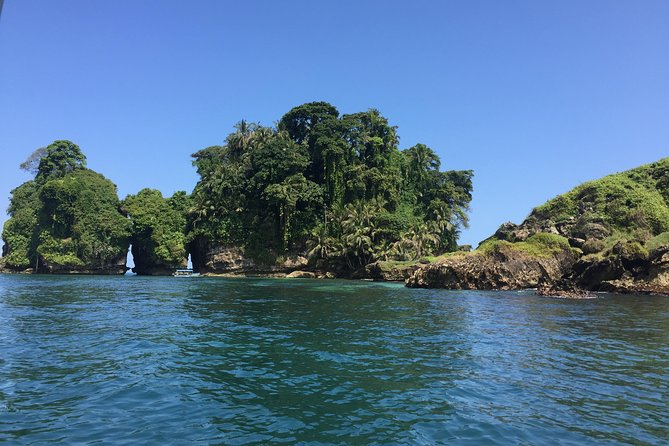 Speed Boat tour to Mangrove Point -Starfish Beach -Bocas del Drago and Birds Island