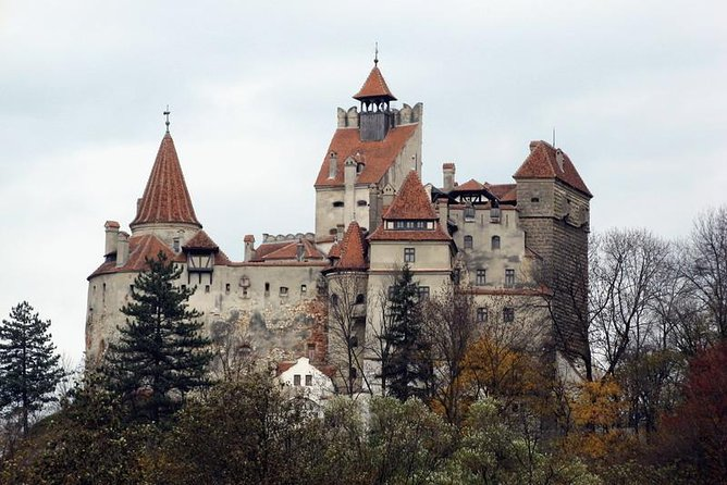 Full-Day Dracula Castle, Peles Castle and Râșnov Citadel Tour from Bucharest photo 7
