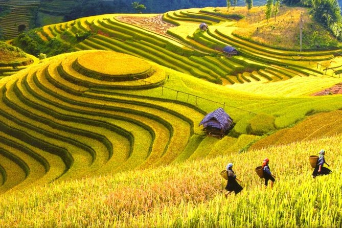 Sapa Trekking Tours - 2 Days 1 Night Stay At Homestay photo 3