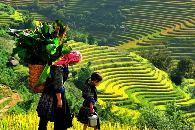 Sapa Trekking Tours - 2 Days 1 Night Stay At Homestay photo 1