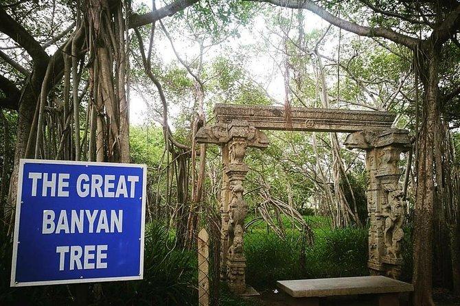 Visit The Huddleston Gardens and Semmozhi Poonga in Chennai