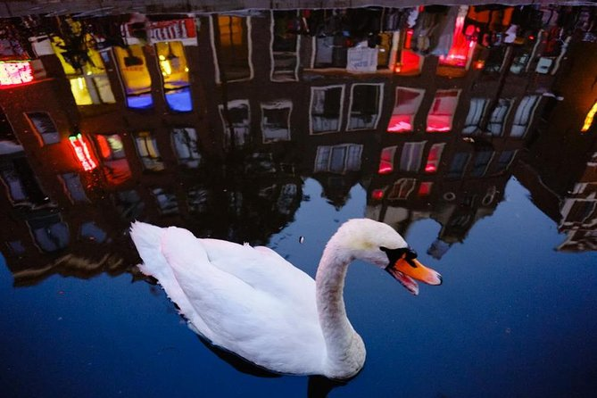 Amsterdam Red Light District 1.5-Hour Walking Tour with Local Guide