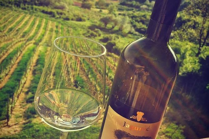 The Dionysus Tour Lunch or dinner and Wine Tasting at Plesivica photo 1