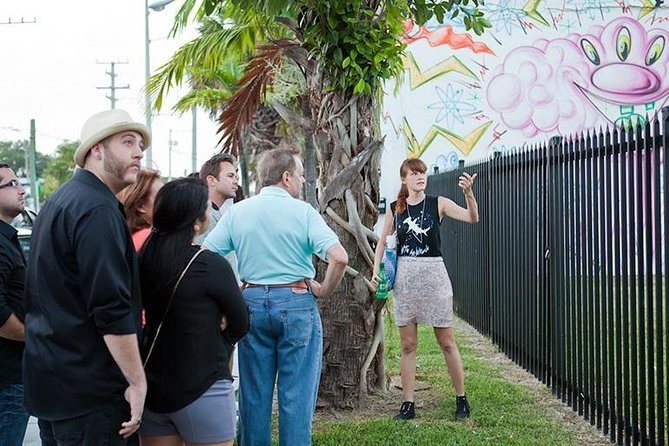 Private Wynwood Street Art and Gallery Tour