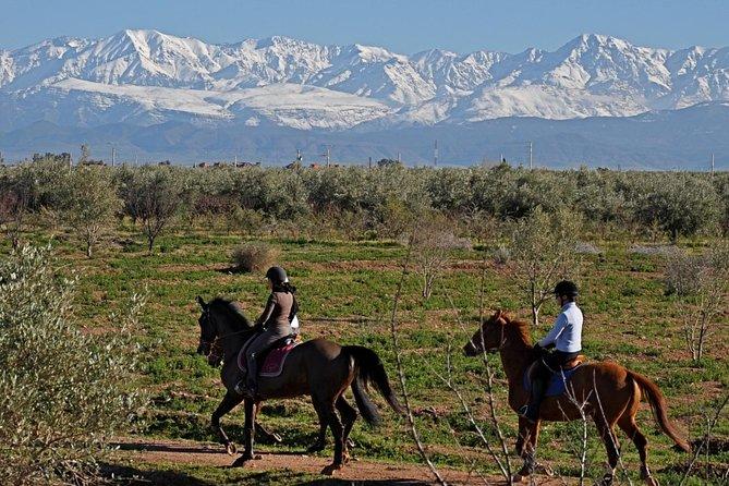 Marrakech à cheval
