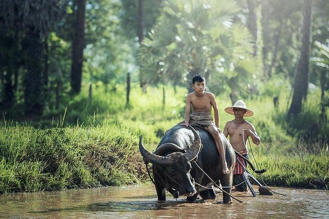 Village Life Tour de Siem Reap