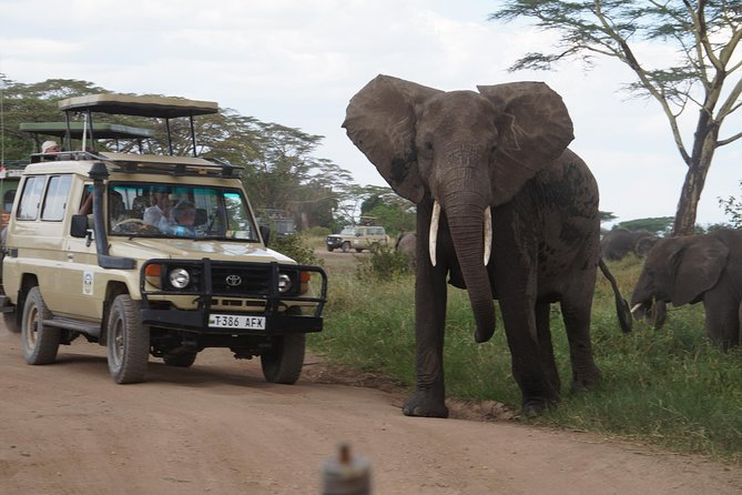 3 Days Serengeti and Ngorongoro Crater Safari from Mwanza to Arusha
