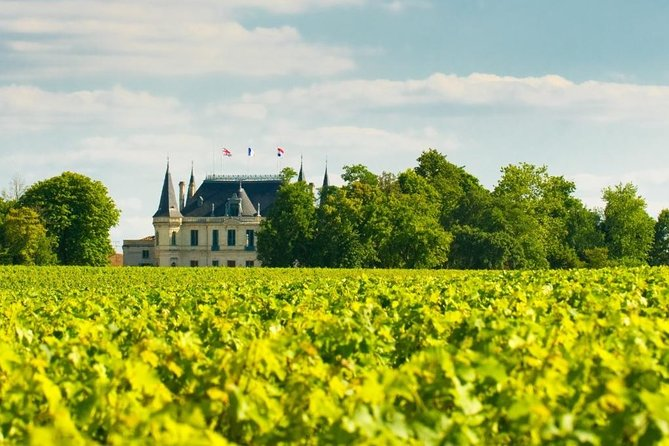 Burgundy Day Trip from Paris with Wine Tasting, Lunch, and Visit to Auxerre