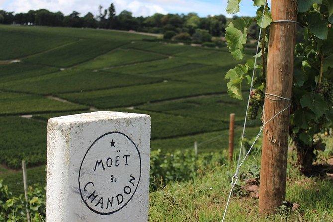 Paris SuperSaver: Champagne Wine Tour and Paris Segway Tour