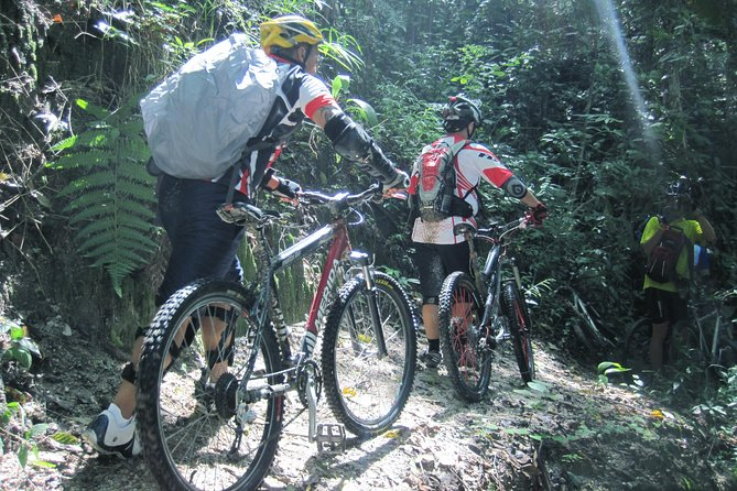 Full-Day Advanced XC Downhill Biking at Doi Suthep National Park Chiang Mai