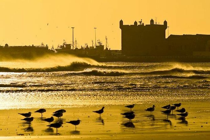 Essaouira Private Full-Day Trip from Marrakech