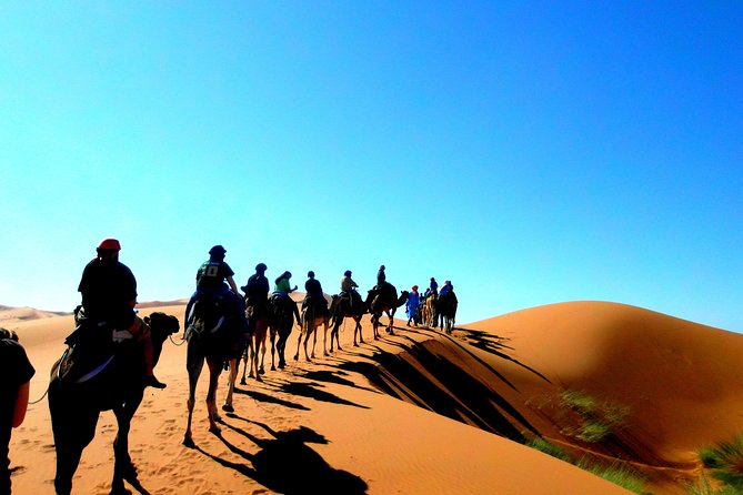 Shared Group 2 Days Sahara Desert Trip From Marrakech To Zagora Dunes