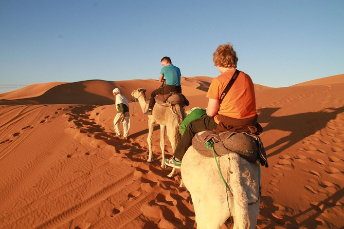 Day trip to Erg chigaga dunes from zagora including camel ride by 4x4 photo 1