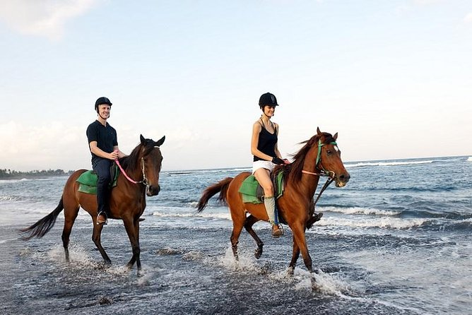 Experience Horse Riding with Ubud Swing Activity