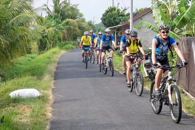 Private Mountain Cycling Adventure in Bali: Kintamani to Ubud