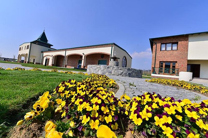 Fruska gora Wine Tour from Belgrade