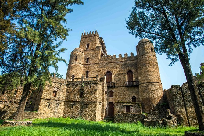 Best of Gondar in One Day: Castles, Churches and Coffee Ceremony