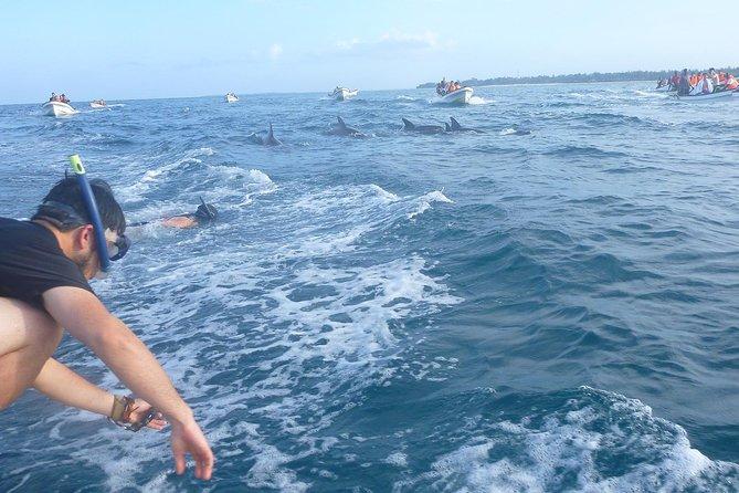 Dolfijnen en Jozani Forest Wildlife-tour vanaf Zanzibar