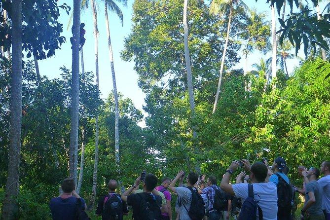 History & Nature Tours in Zanzibar (2 Days / 5 Tours)