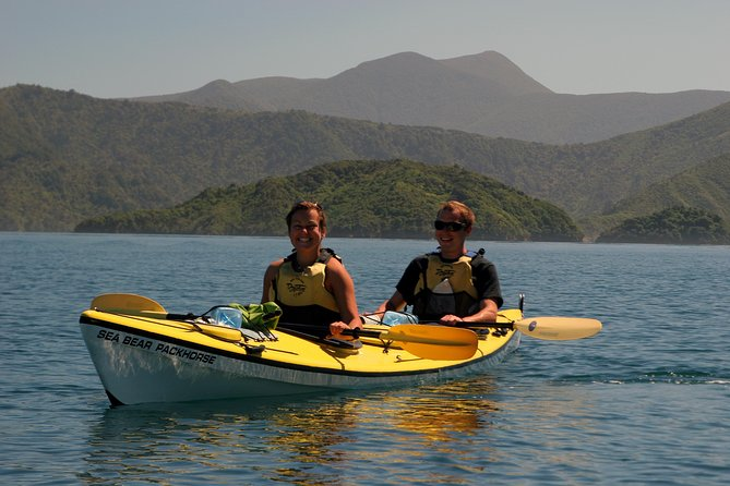 Half-Day Guided Sea Kayaking Tour from Anakiwa photo 3