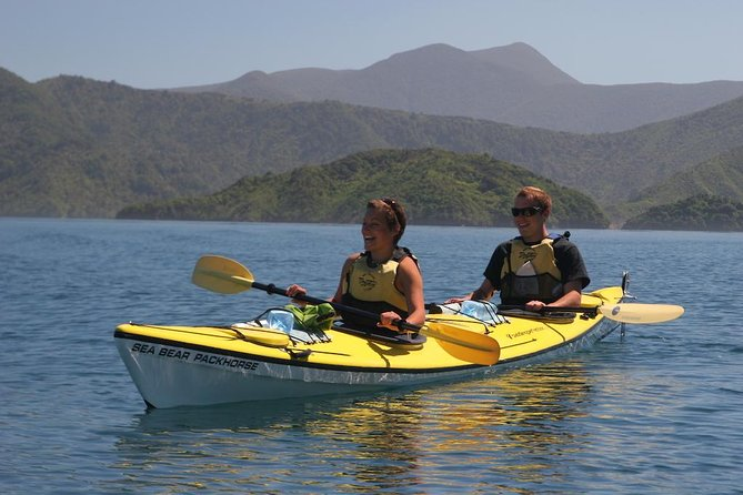 Half-Day Guided Sea Kayaking Tour from Anakiwa photo 1