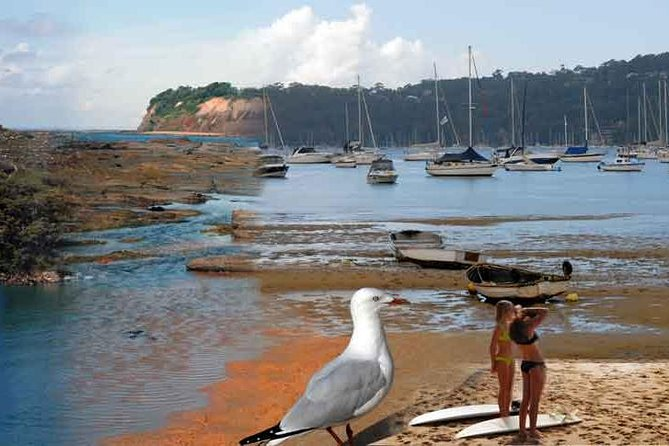 Sydney's Northern Beaches - Paradise in a city