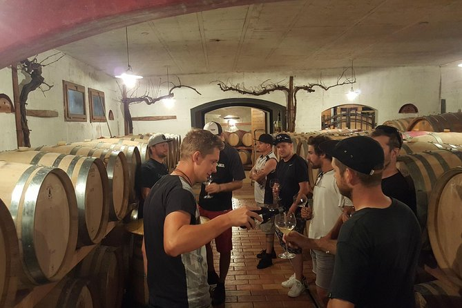 Wine Tour: Half-Day Tour