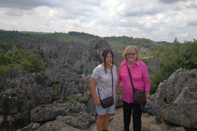 1-Day Stone Forest Geological Park Private Tour with the Lunch from Kunming