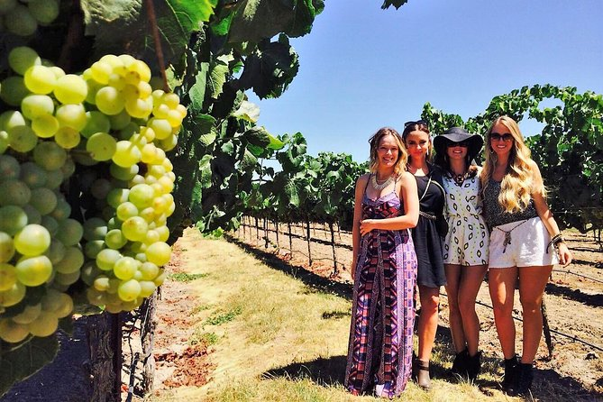 Private Tour to Napa and Sonoma Wine Country From San Francisco