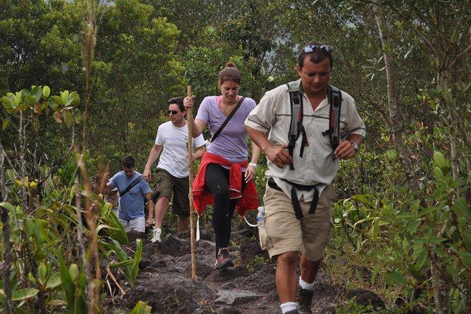 Excursión combinada de día completo de lo mejor de Arenal que incluye: Puentes colgantes, la catarata La Fortuna, senderismo al volcán y aguas termales
