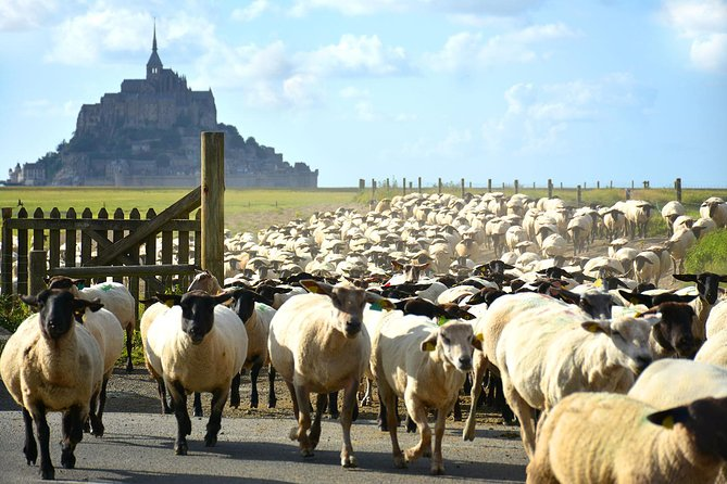 Private Walking Tour of Mont-St-Michel and Surroundings photo 1