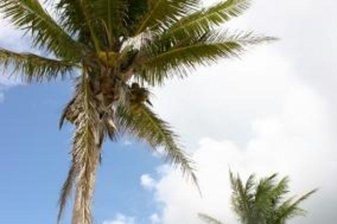 Trinidad Beach Tour